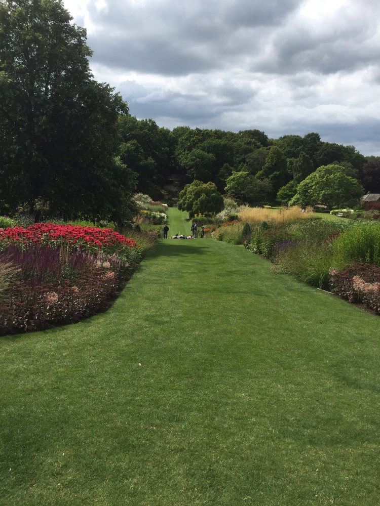TODAY AT RHS HARLOW CARR 5th AUGUST 2015 (5/6)